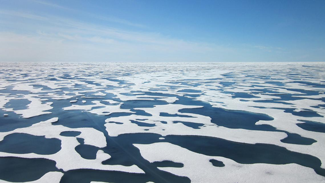 Image result for canadian arctic climate change