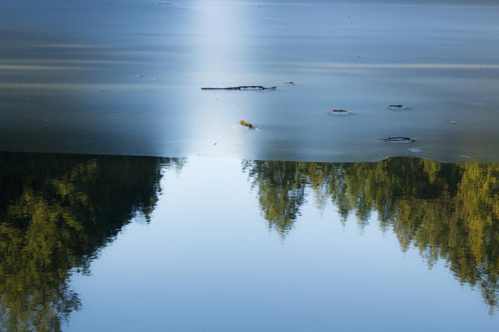 This is a captured moment of early Spring actively eroding the thin ice on a Vancouver Island fresh water lake.