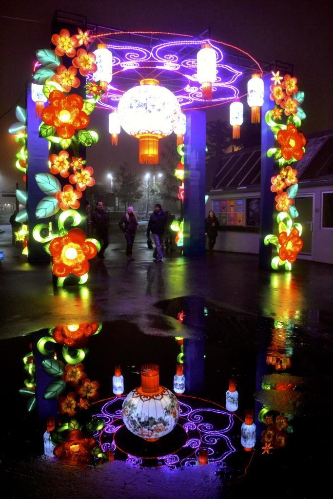 A stormy night lead to spectacular pictures at Illuminasia - the Calgary Zoo's Lantern & Garden Festival