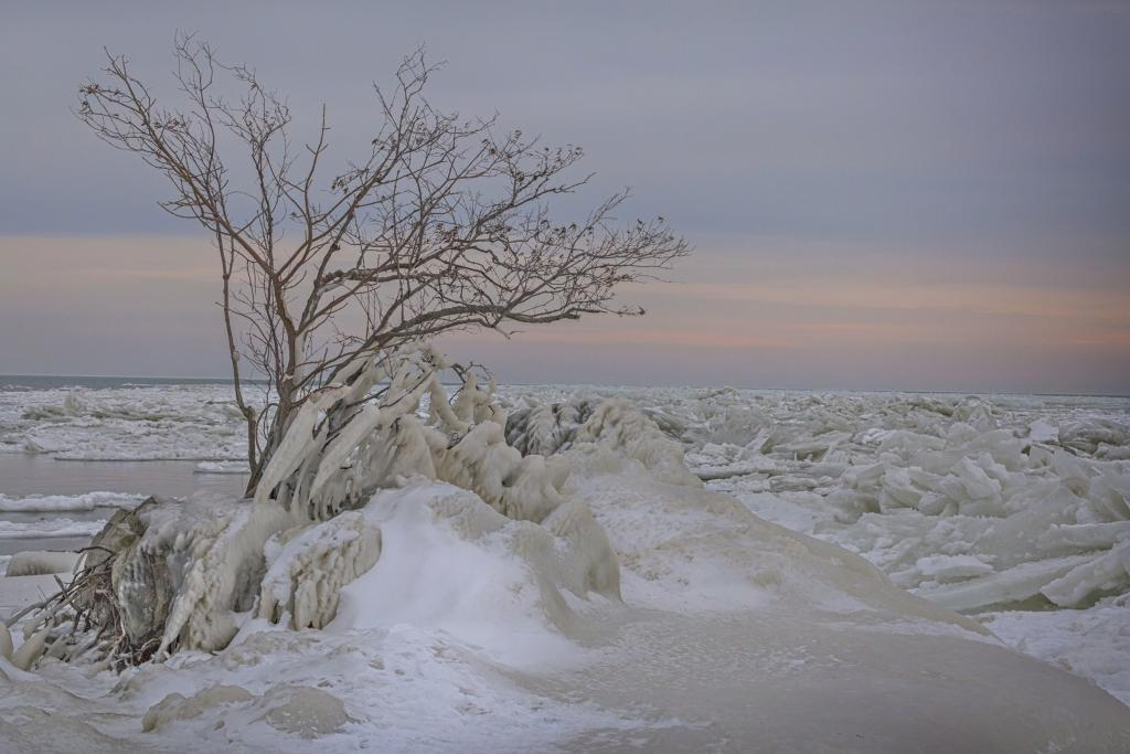 This is an image of Canada's most southern tip, Point Pelee. Here the currents collide and on one side of the point the ice build up is stunningly incredible. The other side of the Point boasts smooth water with little to no ice. All one needs to do is turn around to experience one or the other. Our Canada is amazing!