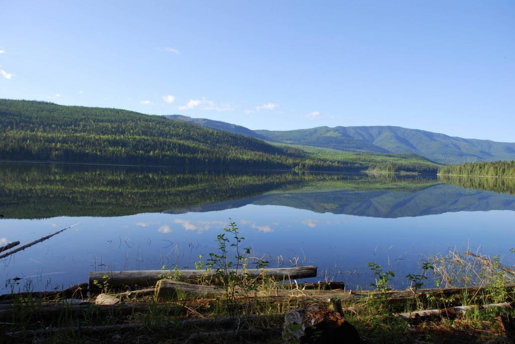 Early June morning on Hidden Lake near Enderby BC