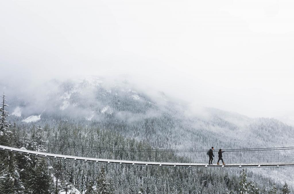 Taken at sea to sky gondola. It was snowing that day and after waiting for an hour the fog lifted just enough to reveal the mountain behind the bridge! Everything was so beautiful,10/10 would go again!!