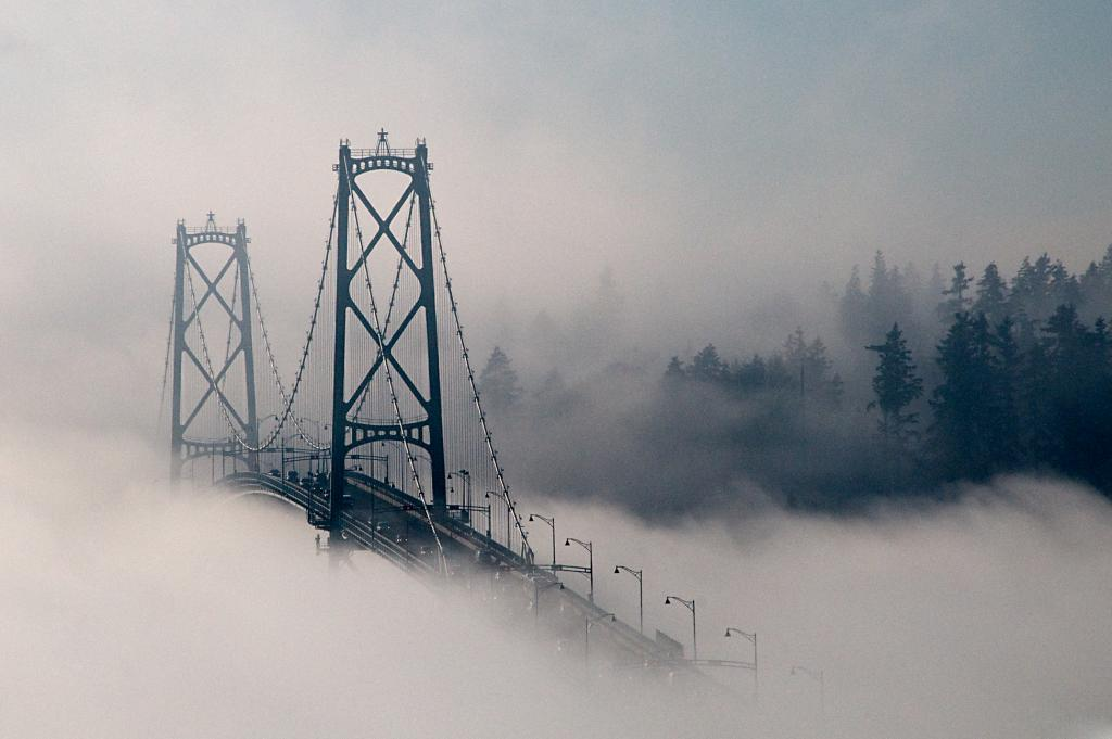 Take from the North Shore, The LIon's Gate Bridge during a heavy fog.