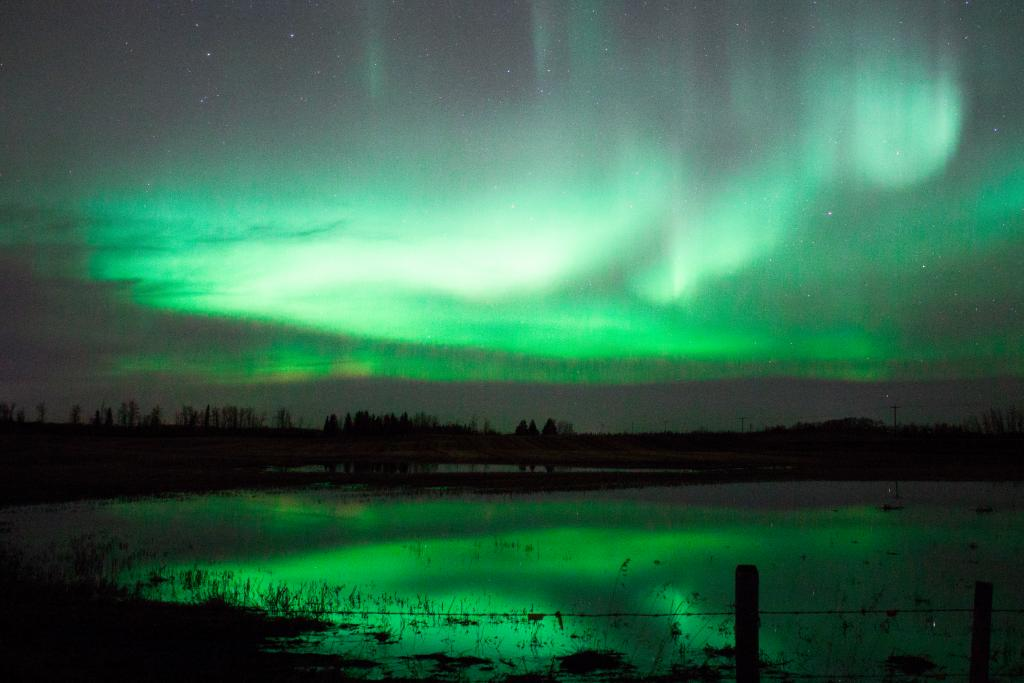 Northern Lights over a field in Alberta