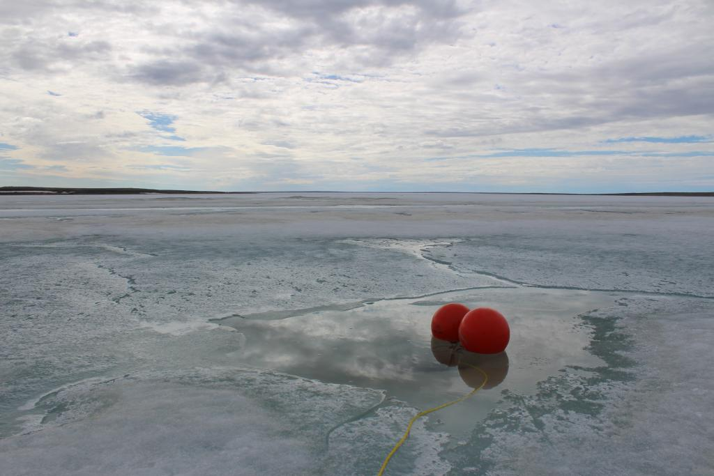 Photo from my field work period in Cambridge Bay, Victoria Island, Nunavut in June 2016. Investigating the marine phytoplankton dynamics in an Arctic coastal bay by doing in situ incubations - this was my little ice hole which I worked out of for 2 weeks until the sea-ice rapidly melted and I then worked in the open waters. I took sea water samples and incubated water for 24hrs (attached to the buoy) and filtered water every day for approximately two months from June to August 2016. The project (my M.Sc at the University of Victoria) aims to further the understanding of nutrient dynamics and phytoplankton blooms as the sea-ice melts in the Canadian Arctic Archipelago.