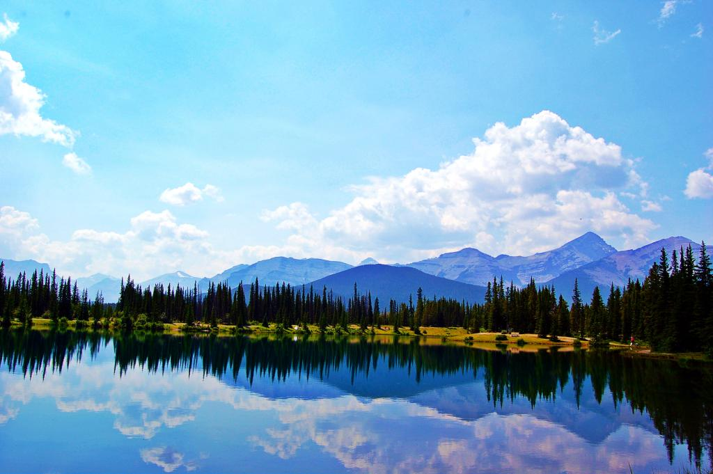 A beautiful summer afternoon spent at Forget Me Not Pond in Kananaskis Country