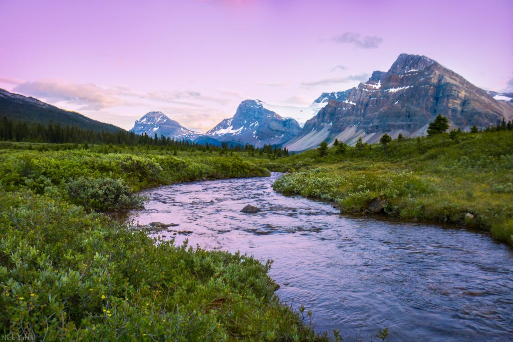 This image was taken just north of bow lake in Banff Alberta. The sun was just starting to set as I drove past this beautiful little creek. I had to stop to capture this scene. This was not a pre planned image. This was simply being in the perfect place at the perfect moment to enjoy the sunset.