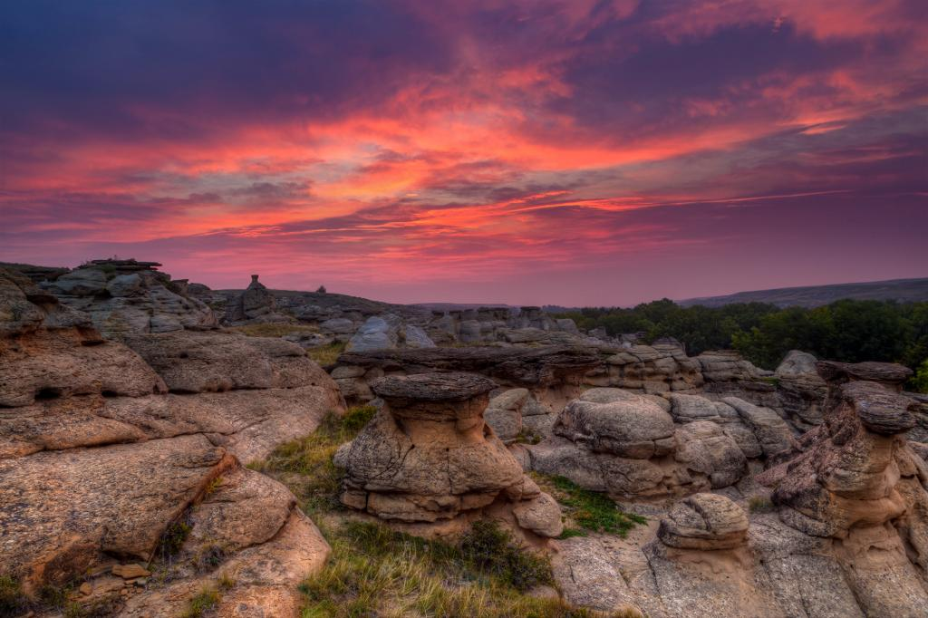 I took this picture of a dramatic sunrise over the sacred landscape at Writing-on-Stone Provincial Park / Áísínai'pi. This spectacular Milk River valley contains a large concentration of First Nation petroglyphs (rock carvings) and pictographs (rock paintings) as well as a rich cultural heritage. Since the 1960s, most of Writing-on-Stone / Áísínai'pi has been surveyed for archaeological sites and more than 80 have been identified. Archaeological studies from the prairies around Writing-on-Stone / Áísínai'pi show that people have lived here for at least 10,000 years. The earliest archaeological evidence from Writing-on-Stone / Áísínai'pi itself is 3,500 to 4,500 years old.  The majority of archaeological evidence here dates from 1,750 years ago until the recent past. Archaeological artifacts reveal information about Blackfoot history, relationships with neighbours and development of new ways of life.