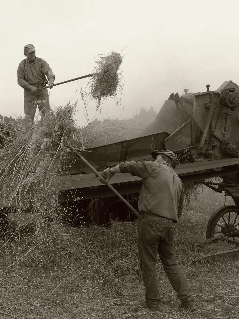 Canadians have always been hard workers, in the mines, on the prairies, felling timber on the coast. This recent photo pays tribute to the hard working men and women who were pioneers in this country. (the photo, converted to black and white, is of the members of the Saanich Historical Artifacts Society who recreate old time threshing, using a steam powered donkey, every summer at a gathering on Vancouver Island)