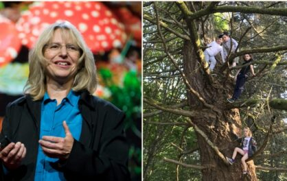 Ep 10: Suzanne Simard on How Trees Communicate with Each Other