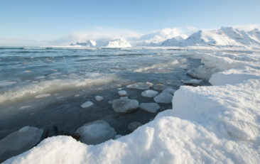 The Geotraces Arctic Expedition
