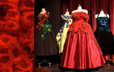 Professor designs gowns inspired by microscopic images of cancer
