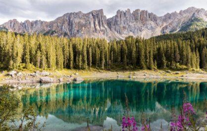Indigenous lands have highest biodiversity
